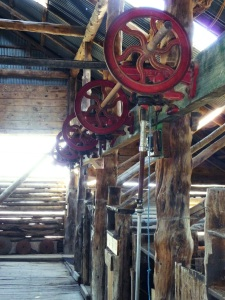 Shearing stand in Mungo woolshed