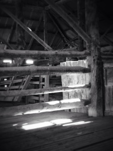 Sheep pen in Mungo woolshed