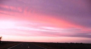 Pink sunrise over outback highway