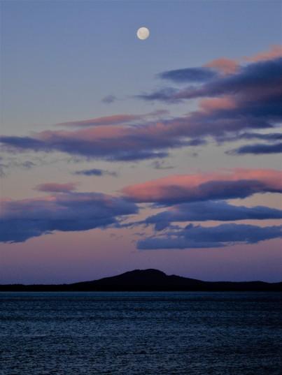Tasmania 2012.02.06 (106).JPG