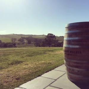 Wine barrel and view over winery